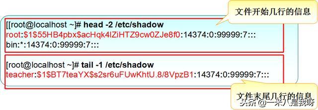 Linux基础命令(十一)——用户和组账号管理